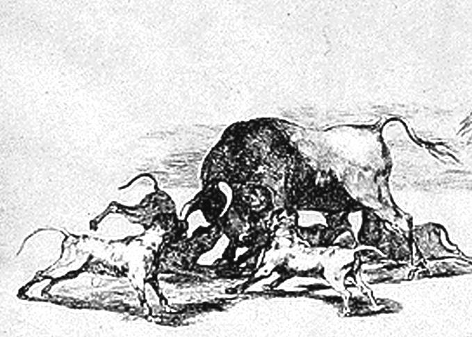 Tauromachia, Goya