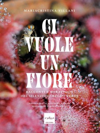 Ci vuole un fiore, copertina